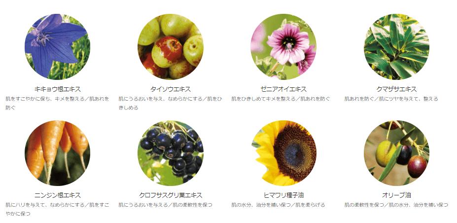 オラクルのクレンジングミルクに配合されている植物成分