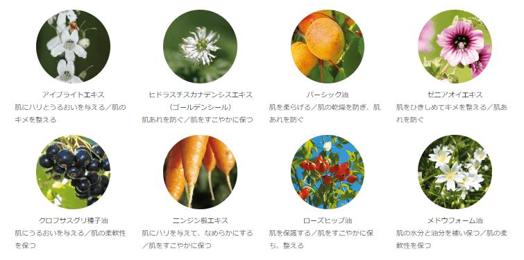 オラクルの目元用美容液「アイフォーミュラ」の植物成分