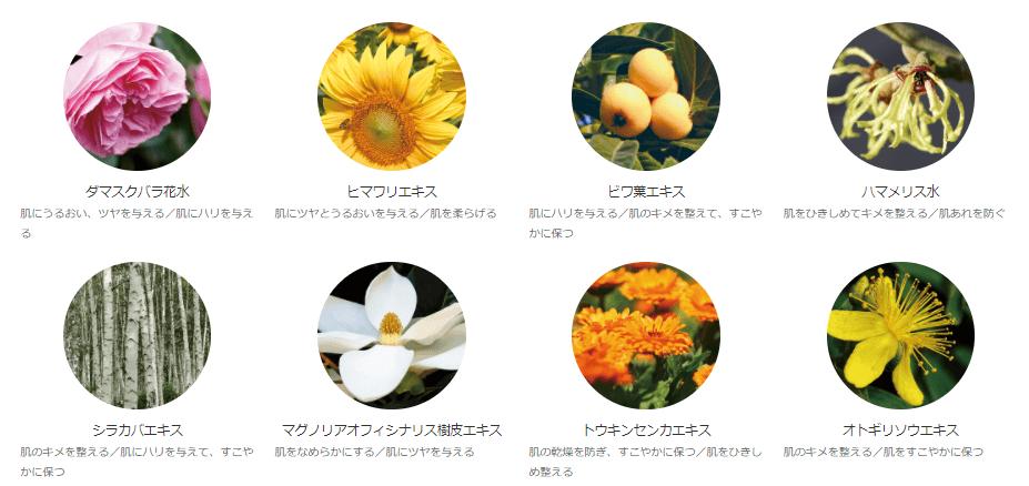 オラクル化粧水に配合されている植物成分
