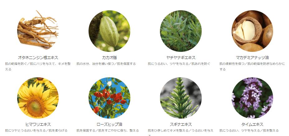オラクルナイトクリーム(保湿クリーム)の植物成分