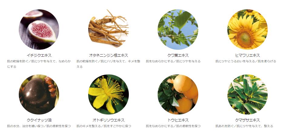 オラクルの洗い流すパック「クリアブライト」の植物成分