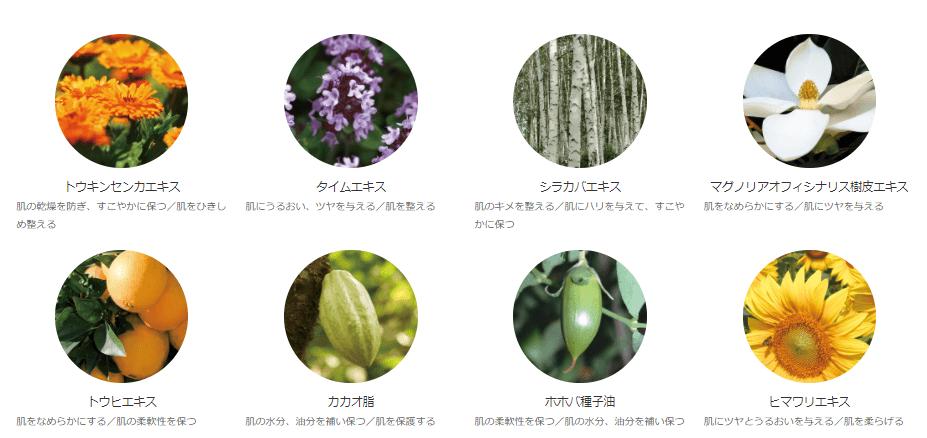 オラクルの美容液に配合されている植物成分
