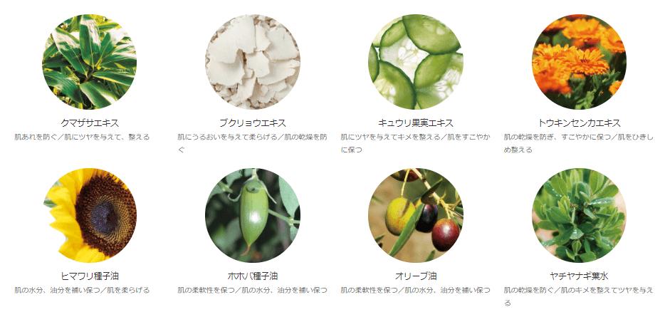 オラクル洗顔料に配合されている植物成分