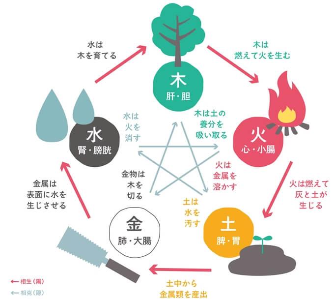 漢方の五行説「木・火・土・金・水」の図解
