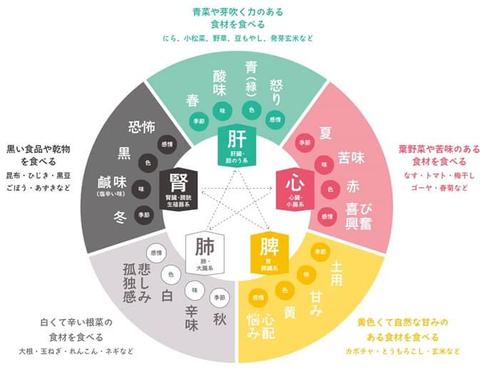 漢方の五臓「肝・心・脾・肺・腎」と食べ物の図解